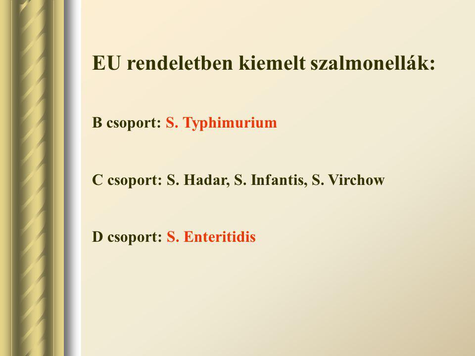EU rendeletben kiemelt szalmonellák: