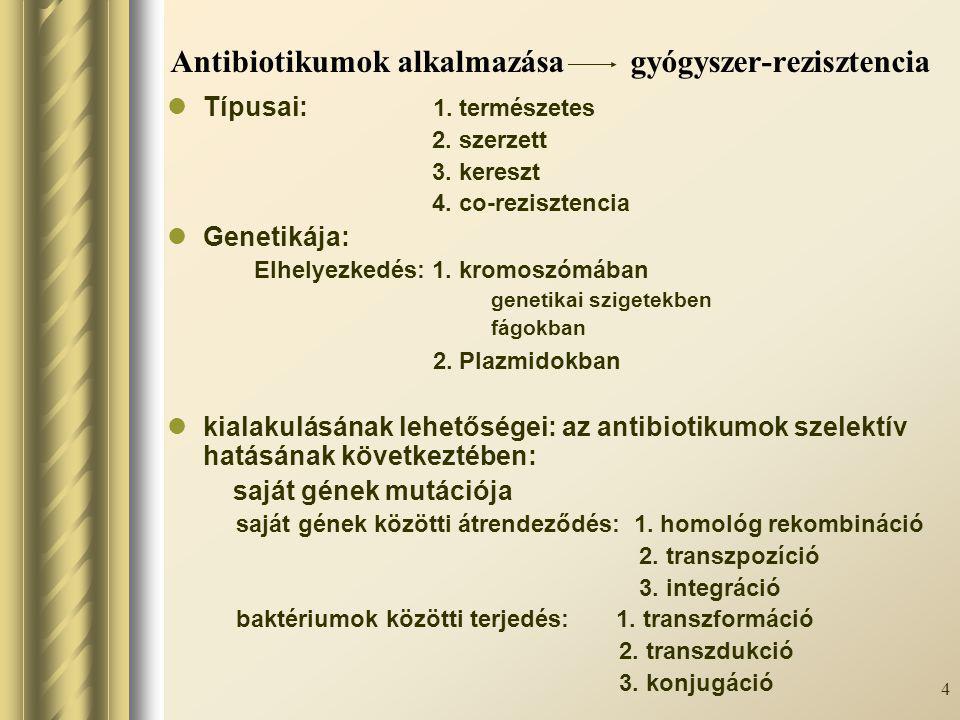 Antibiotikumok alkalmazása gyógyszer-rezisztencia