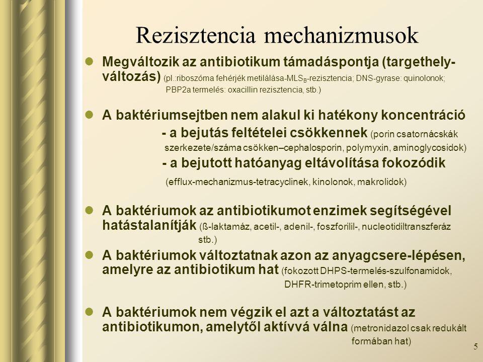 Rezisztencia mechanizmusok
