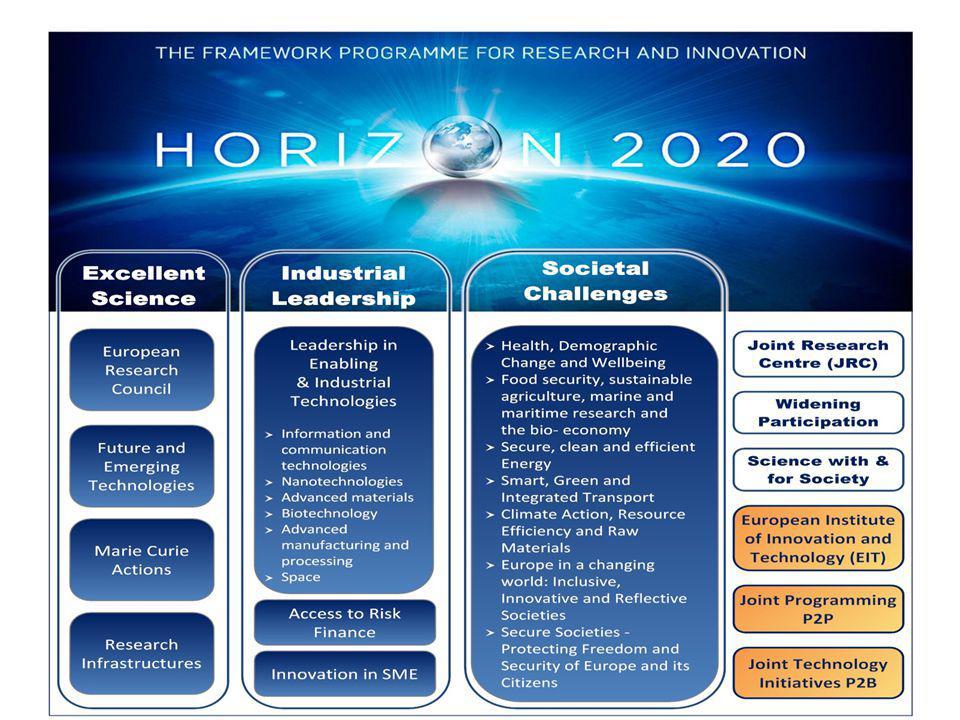 Végrehajtó szervezetek, új menedzsment formák