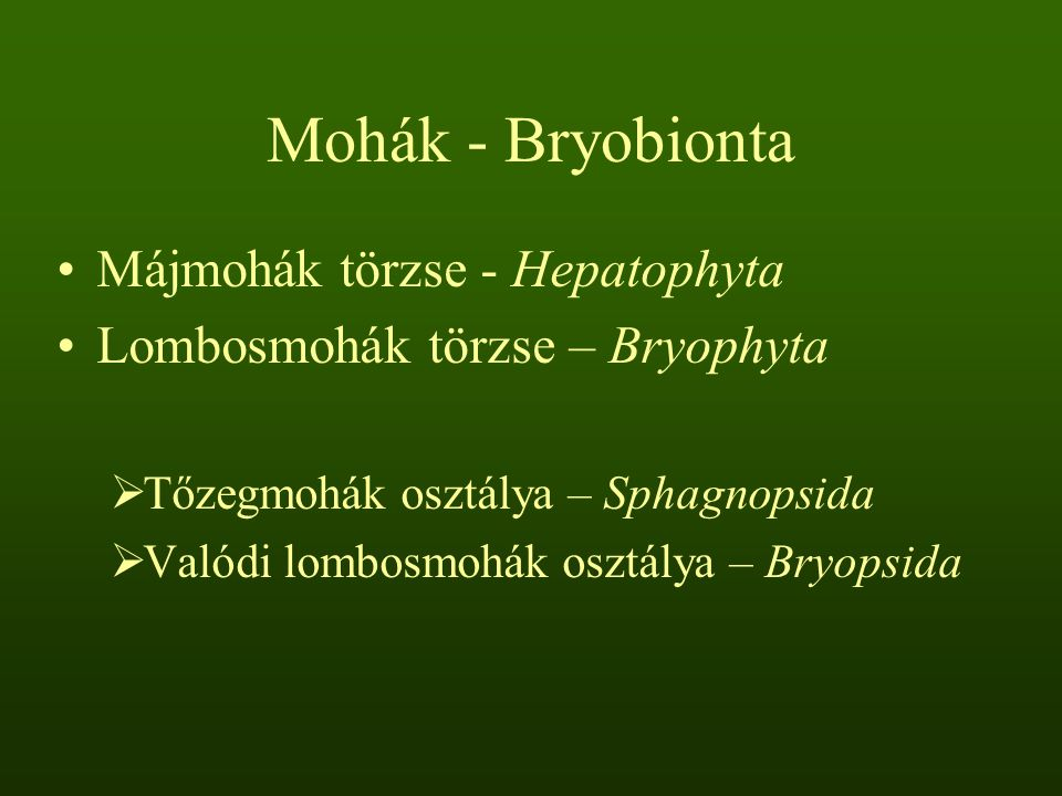 Mohák - Bryobionta Májmohák törzse - Hepatophyta