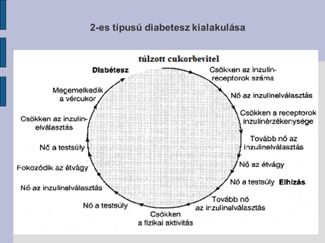 2-es típusú diabetesz kialakulása