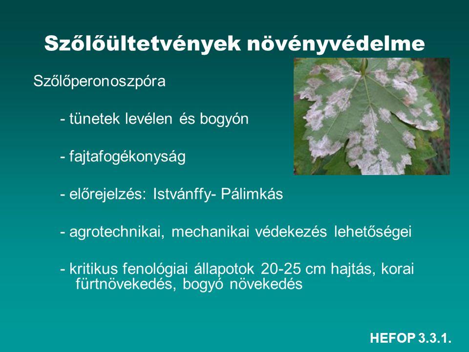 Szőlőültetvények növényvédelme