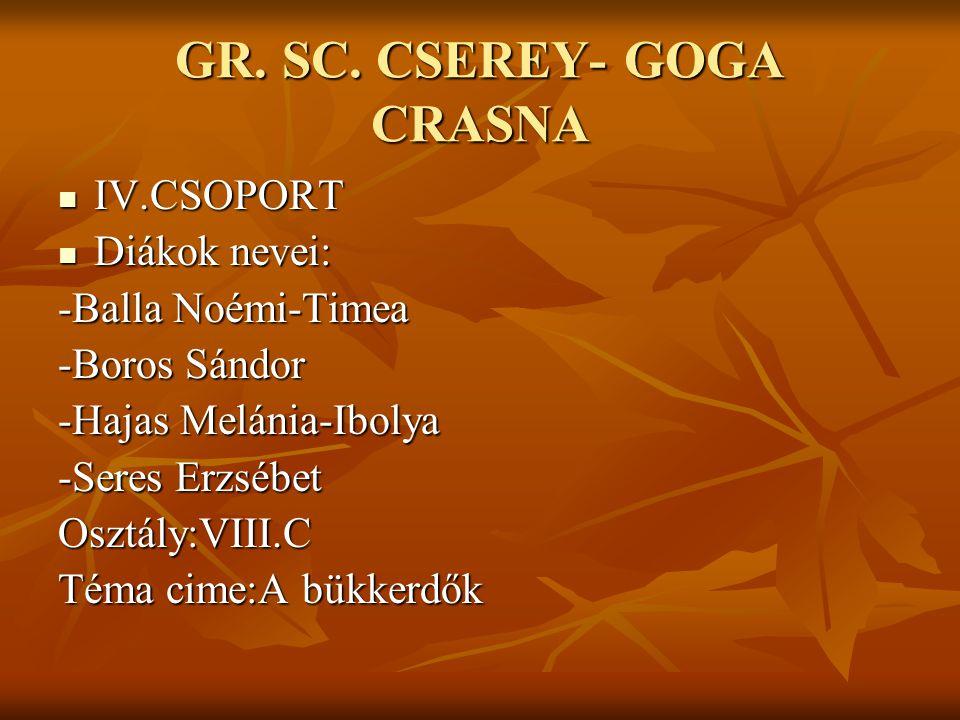 GR. SC. CSEREY- GOGA CRASNA