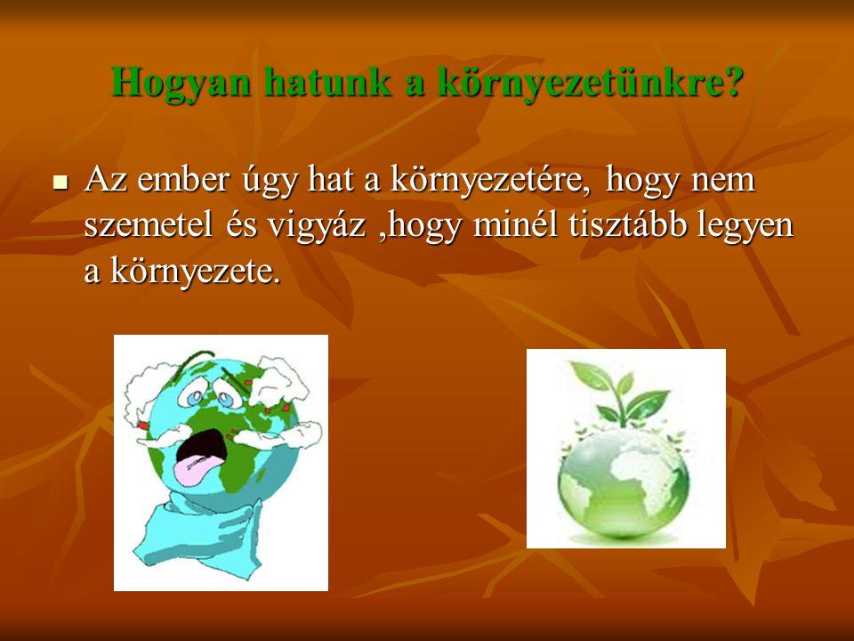 Hogyan hatunk a környezetünkre