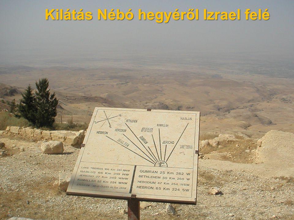 Kilátás Nébó hegyéről Izrael felé