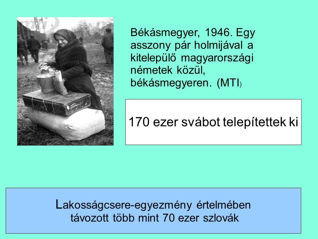 170 ezer svábot telepítettek ki