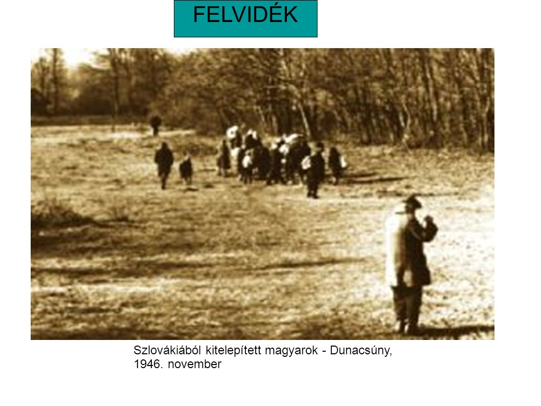 FELVIDÉK Szlovákiából kitelepített magyarok - Dunacsúny, 1946. november