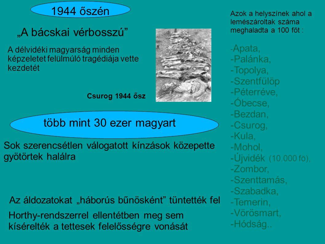 """1944 őszén """"A bácskai vérbosszú több mint 30 ezer magyart -Palánka,"""