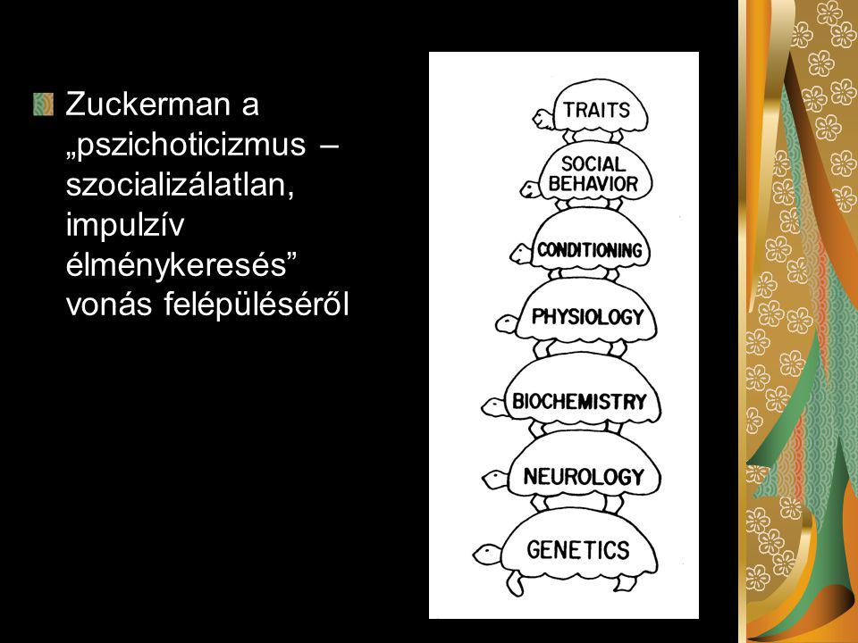 """Zuckerman a """"pszichoticizmus – szocializálatlan, impulzív élménykeresés vonás felépüléséről"""