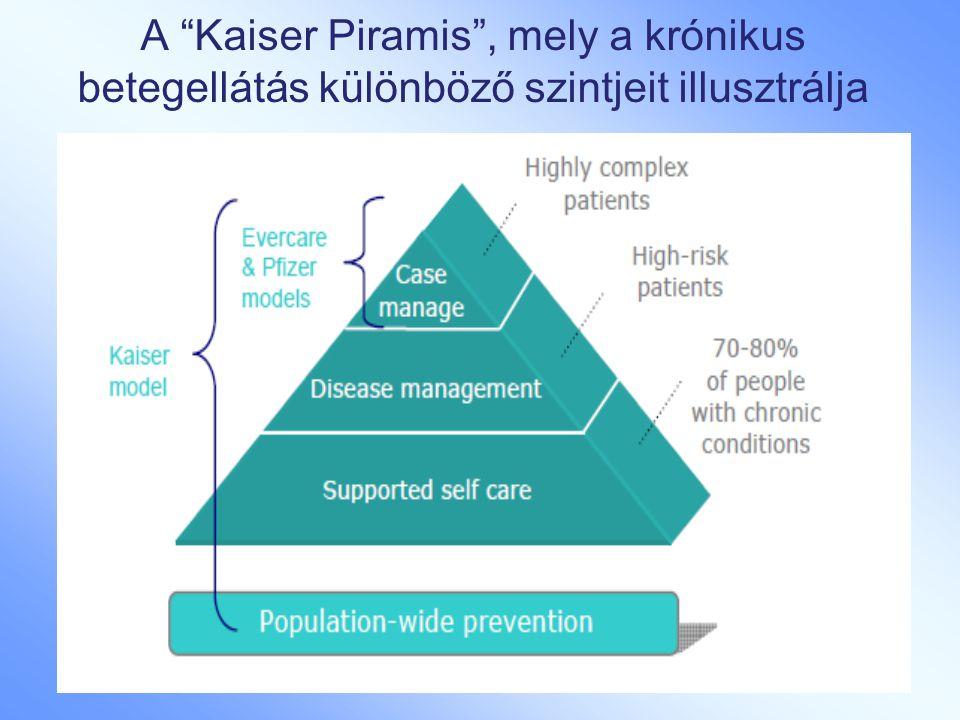 A Kaiser Piramis , mely a krónikus betegellátás különböző szintjeit illusztrálja