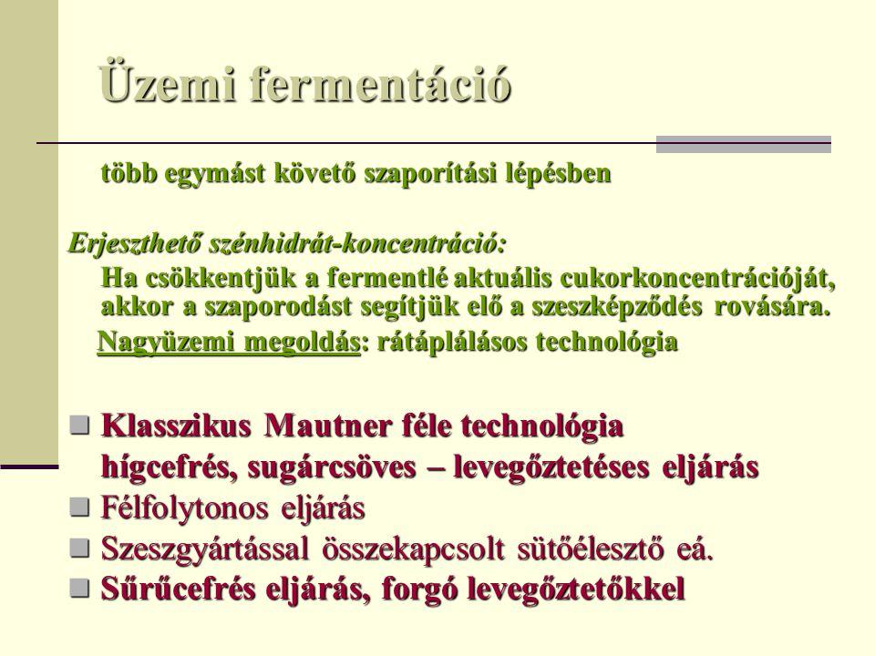 Üzemi fermentáció Klasszikus Mautner féle technológia