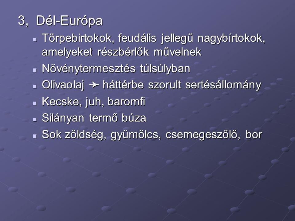 3, Dél-Európa Törpebirtokok, feudális jellegű nagybírtokok, amelyeket részbérlők művelnek. Növénytermesztés túlsúlyban.