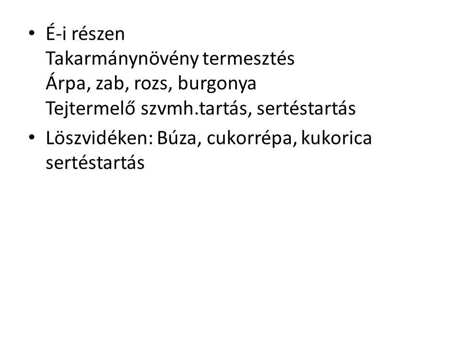 É-i részen Takarmánynövény termesztés Árpa, zab, rozs, burgonya Tejtermelő szvmh.tartás, sertéstartás