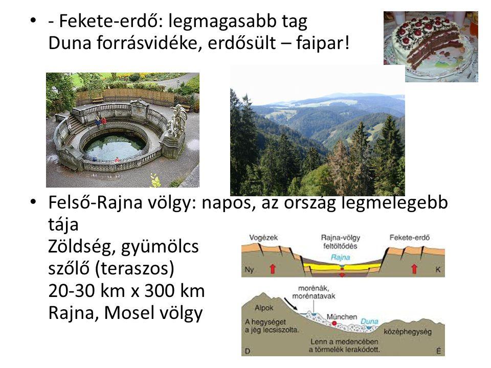 - Fekete-erdő: legmagasabb tag Duna forrásvidéke, erdősült – faipar!