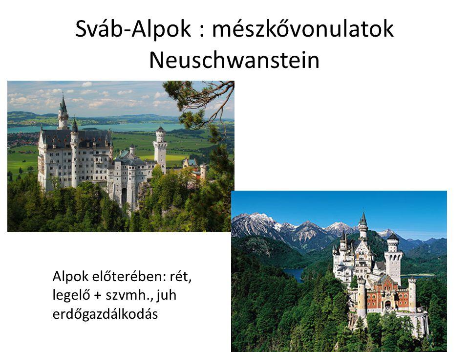 Sváb-Alpok : mészkővonulatok Neuschwanstein