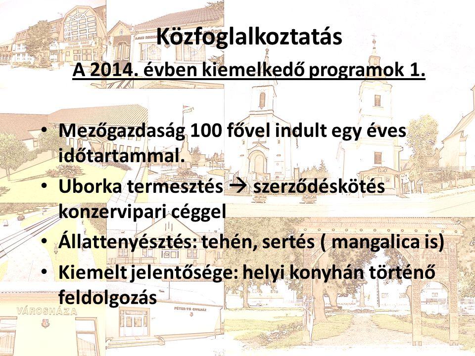 Közfoglalkoztatás 2014. Évben kiemelkedő programok 1