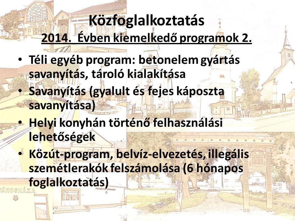 Közfoglalkoztatás 2014. Évben kiemelkedő programok 2.