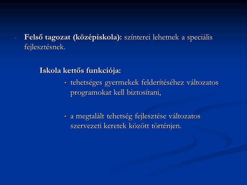 Felső tagozat (középiskola): színterei lehetnek a speciális fejlesztésnek.