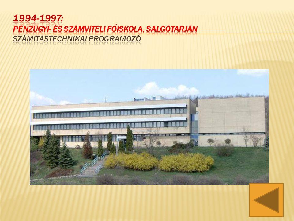 1994-1997: Pénzügyi- és Számviteli Főiskola, SALGÓTARJÁN SZÁMÍTÁSTECHNIKAI PROGRAMOZÓ