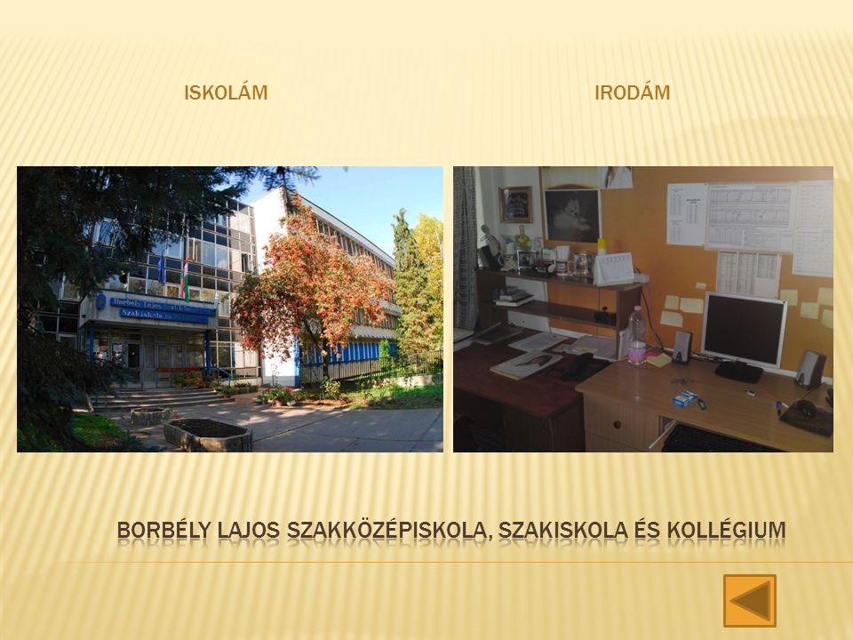Borbély Lajos szakközépiskola, Szakiskola és Kollégium