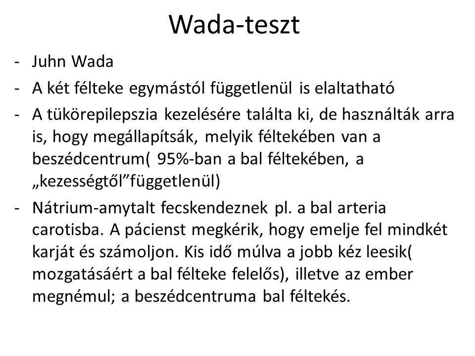 Wada-teszt Juhn Wada. A két félteke egymástól függetlenül is elaltatható.