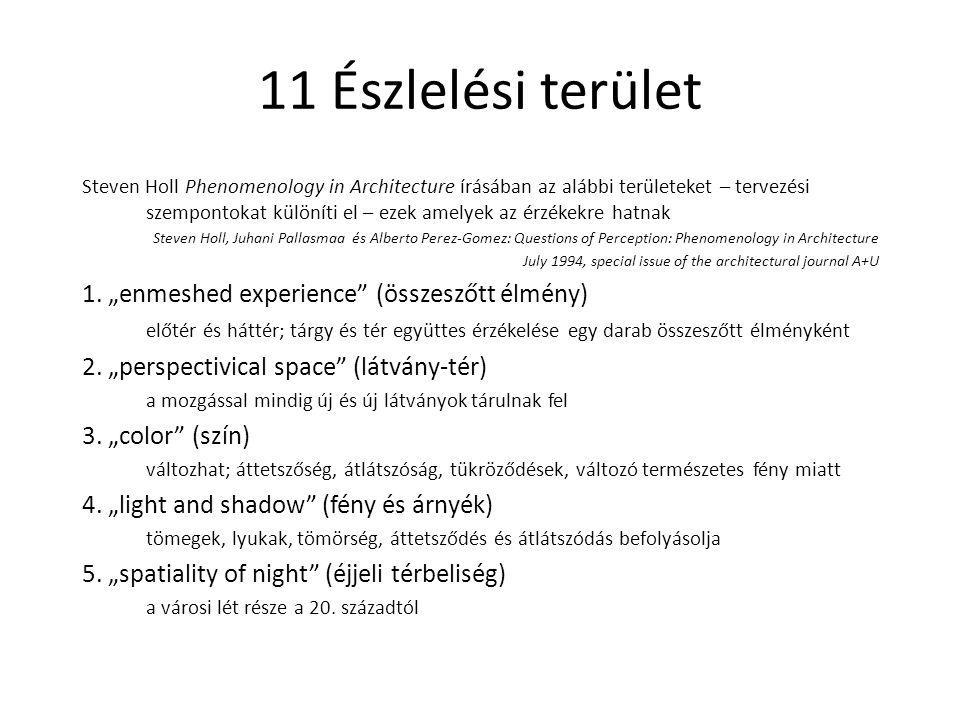 """11 Észlelési terület 1. """"enmeshed experience (összeszőtt élmény)"""