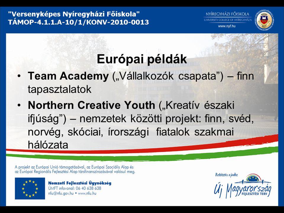 """Európai példák Team Academy (""""Vállalkozók csapata ) – finn tapasztalatok."""