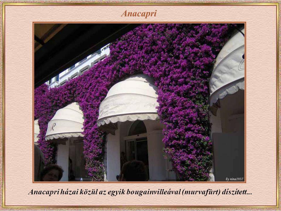 Anacapri Anacapri házai közül az egyik bougainvilleával (murvafürt) díszített...