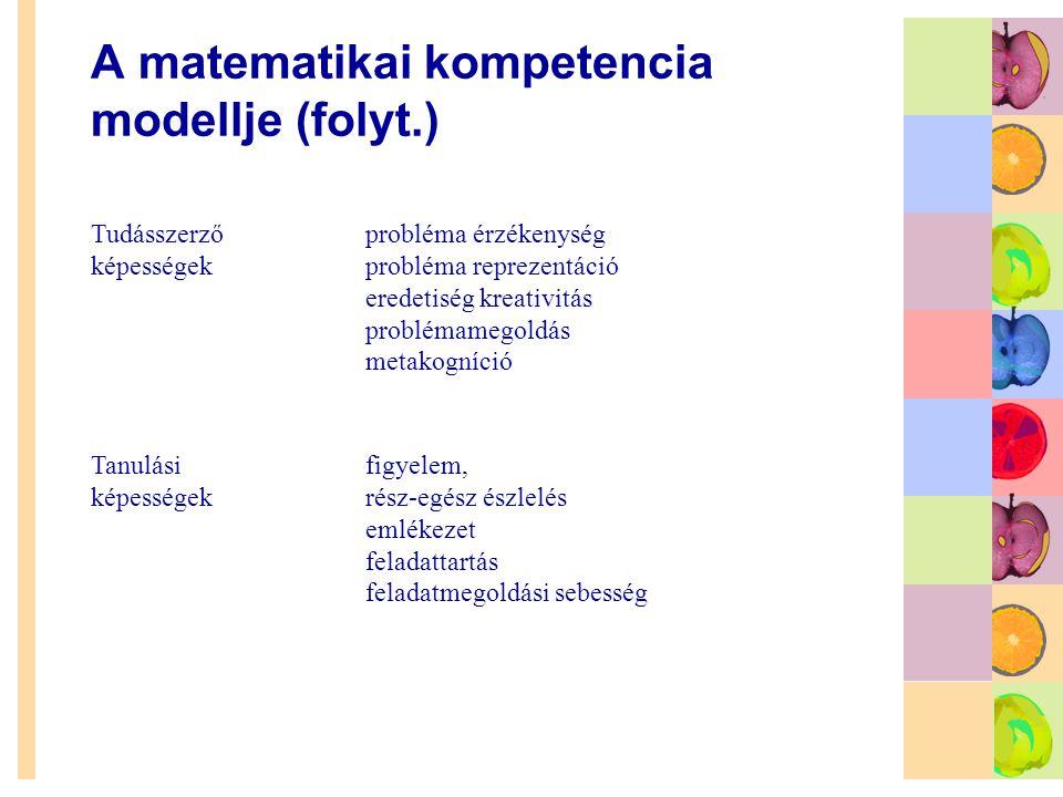 A matematikai kompetencia modellje (folyt.)