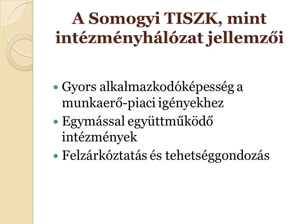 A Somogyi TISZK, mint intézményhálózat jellemzői