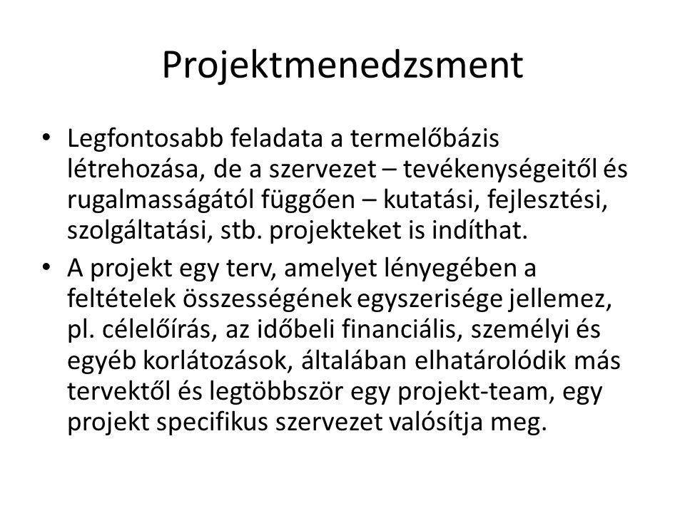 Projektmenedzsment