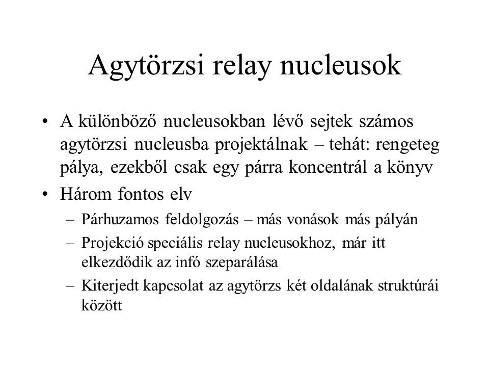 Agytörzsi relay nucleusok