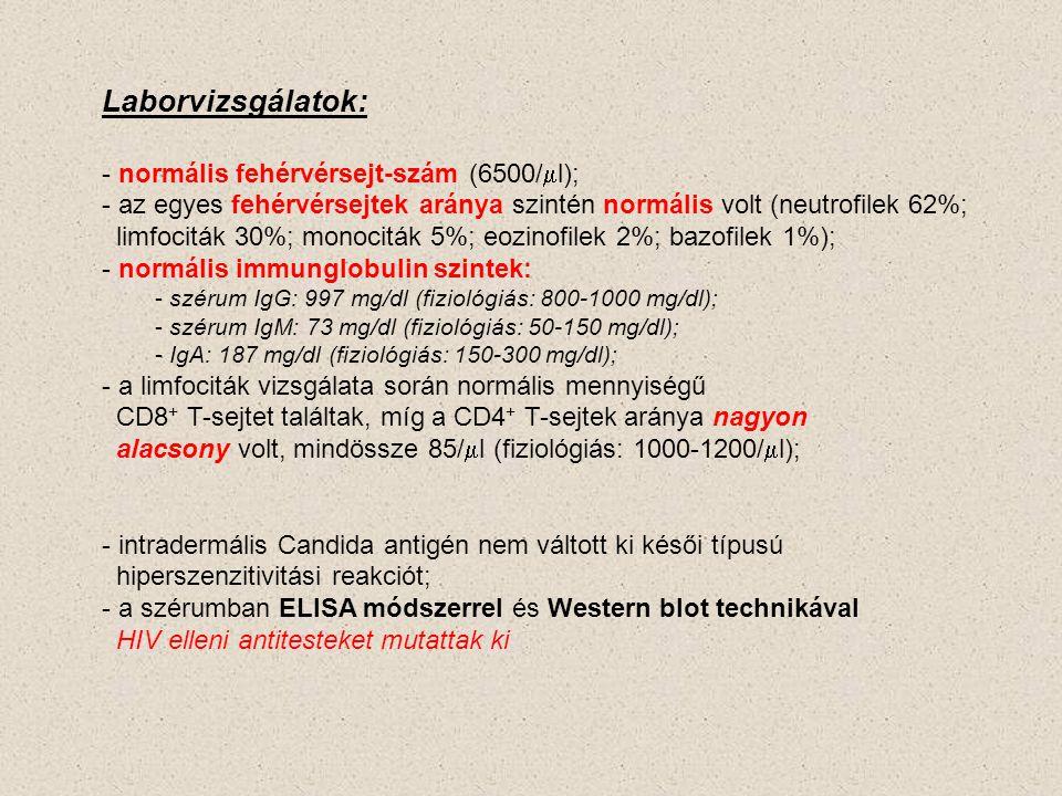 Laborvizsgálatok: normális fehérvérsejt-szám (6500/ml);