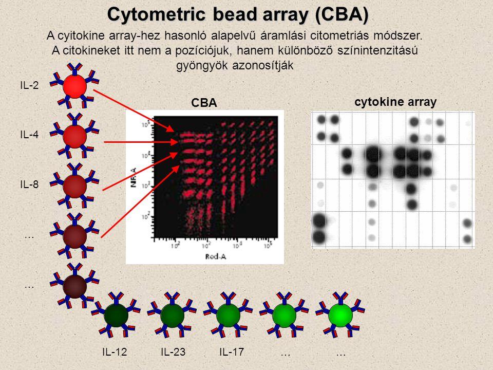 A cyitokine array-hez hasonló alapelvű áramlási citometriás módszer.