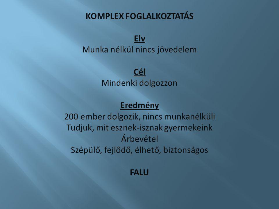 KOMPLEX FOGLALKOZTATÁS
