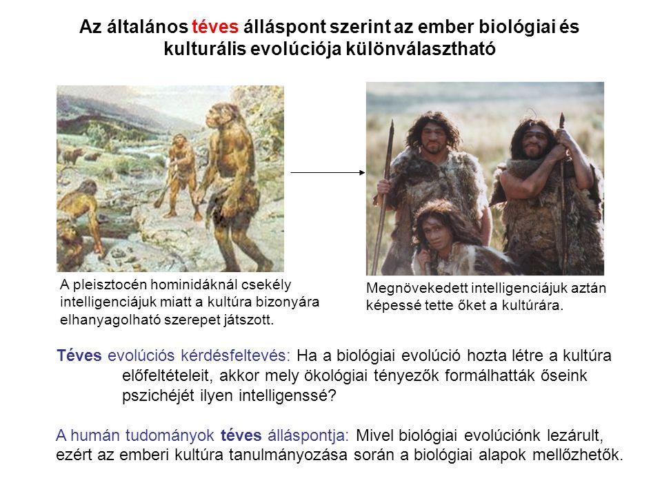 Az általános téves álláspont szerint az ember biológiai és kulturális evolúciója különválasztható