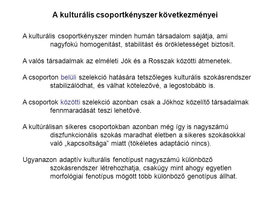 A kulturális csoportkényszer következményei