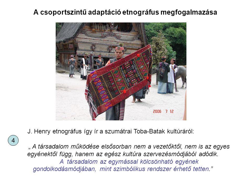 A csoportszintű adaptáció etnográfus megfogalmazása