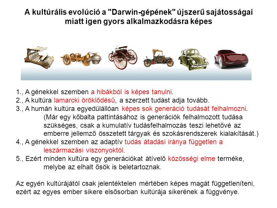 A kultúrális evolúció a Darwin-gépének újszerű sajátosságai miatt igen gyors alkalmazkodásra képes