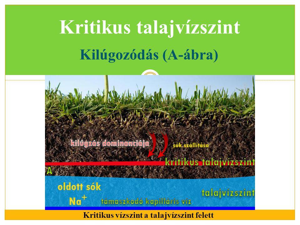 Kritikus talajvízszint