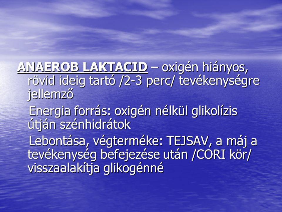 ANAEROB LAKTACID – oxigén hiányos, rövid ideig tartó /2-3 perc/ tevékenységre jellemző