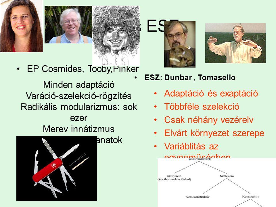 EP és ESZ EP Cosmides, Tooby,Pinker Minden adaptáció
