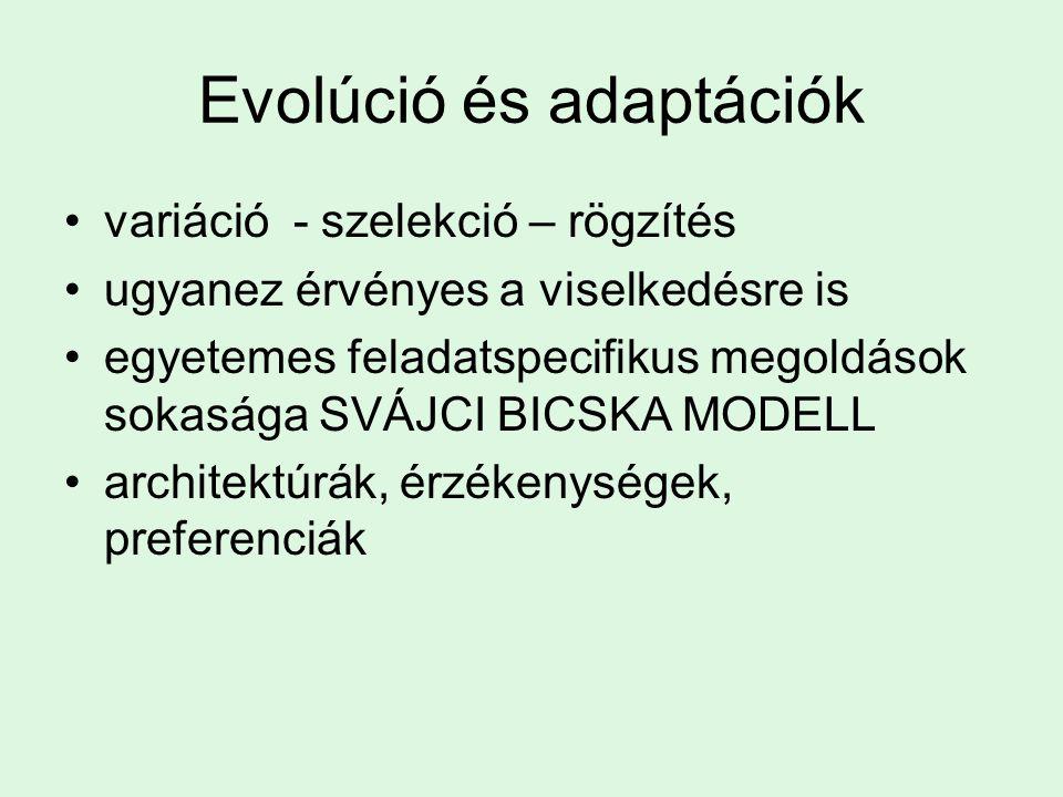Evolúció és adaptációk