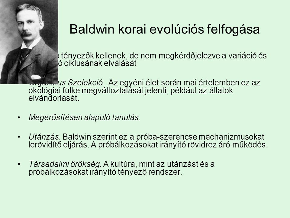 Baldwin korai evolúciós felfogása