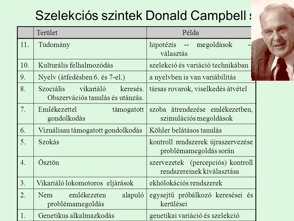 Szelekciós szintek Donald Campbell szerint