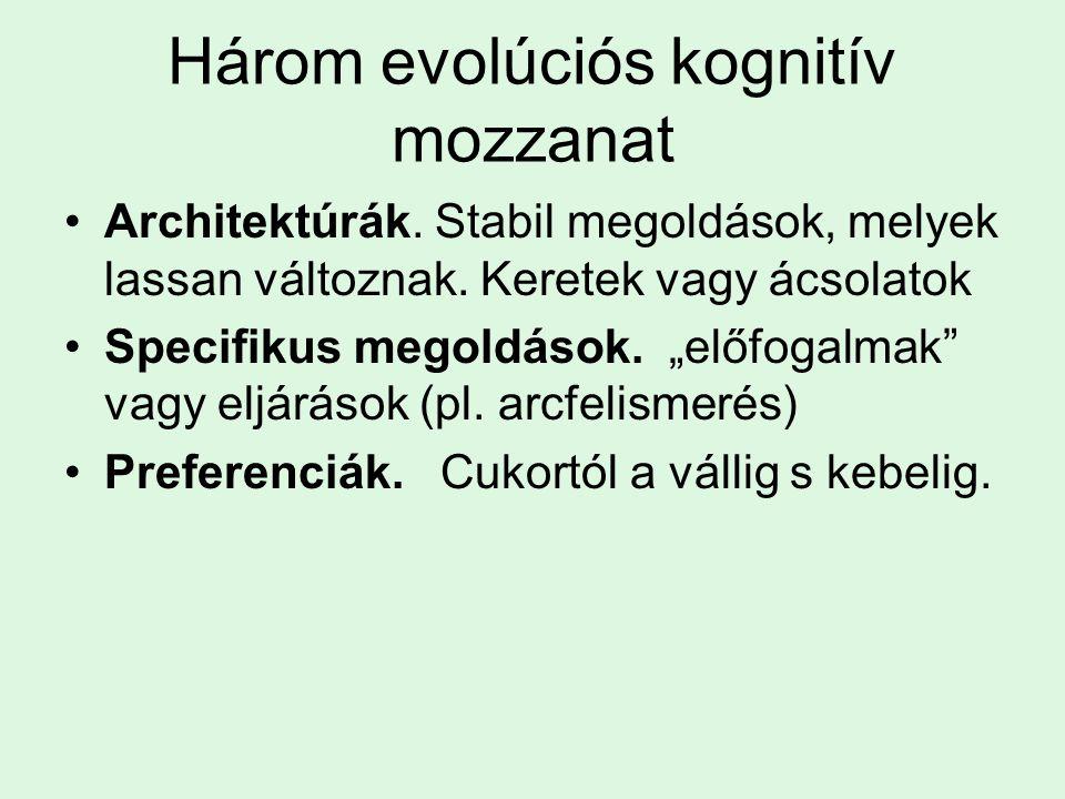Három evolúciós kognitív mozzanat