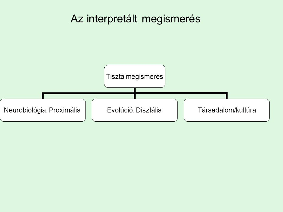 Az interpretált megismerés