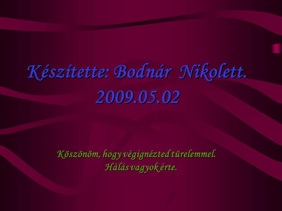 Készítette: Bodnár Nikolett. 2009.05.02