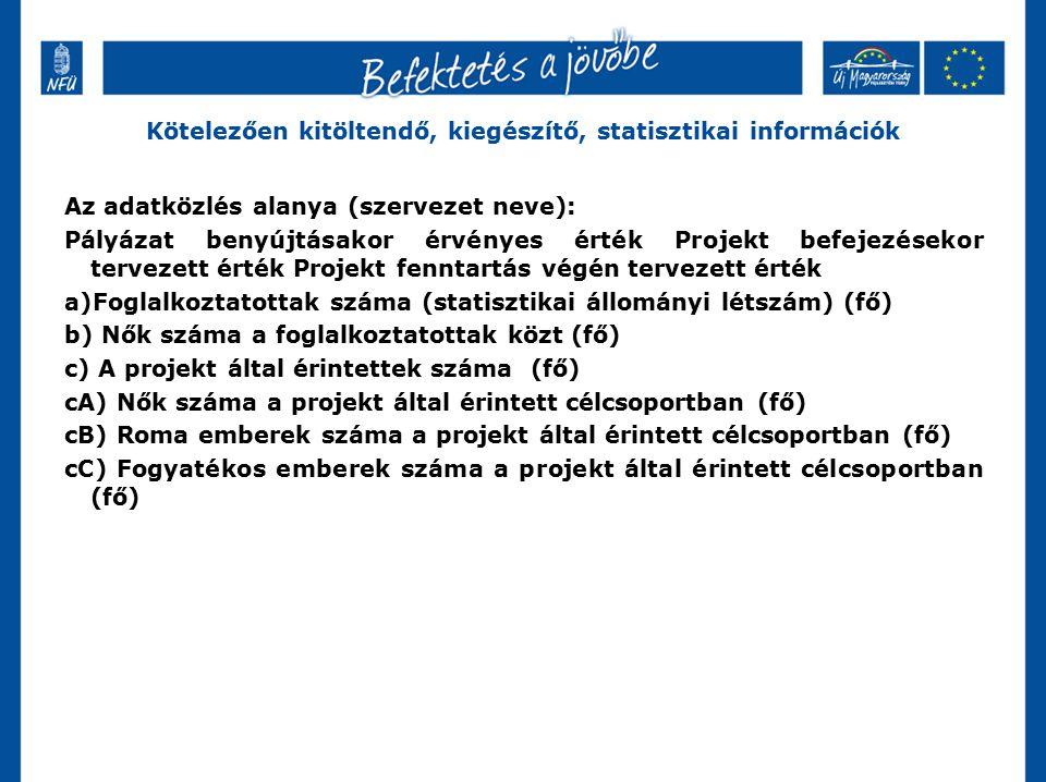 Kötelezően kitöltendő, kiegészítő, statisztikai információk